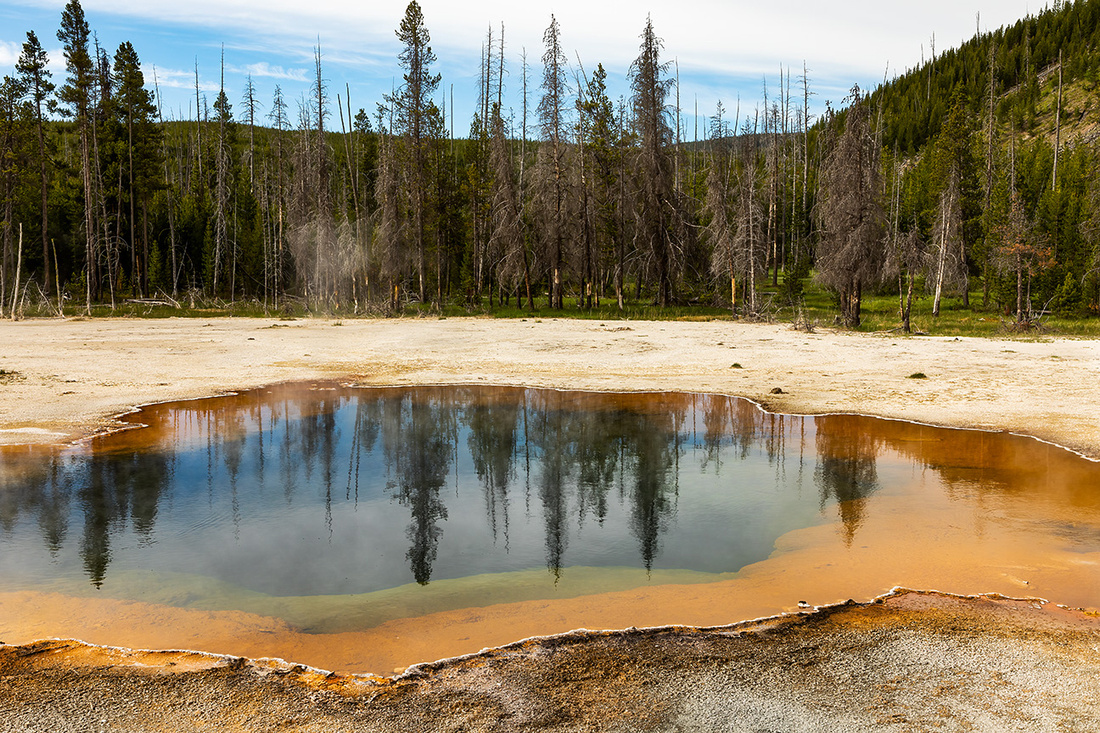 Emerald Pool Reflection