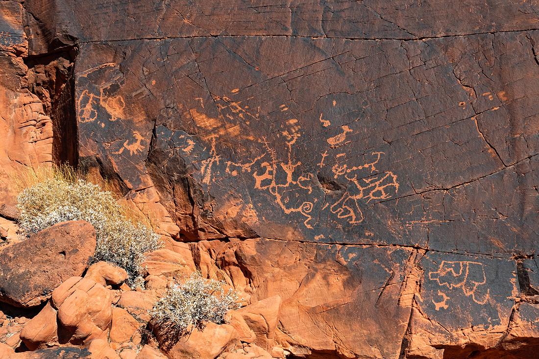 Duck Rock Petroglyph Panel