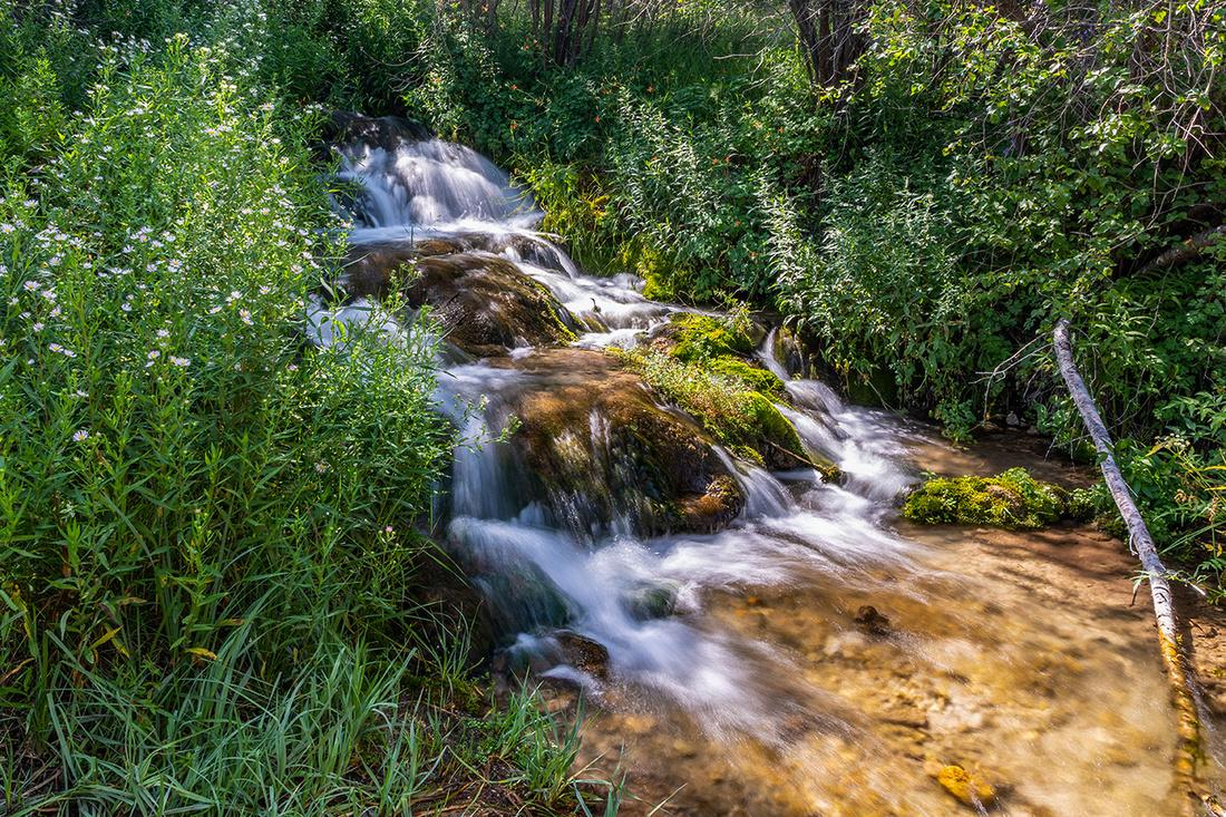 Bird Creek Cascade