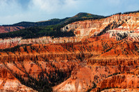 Cedar Breaks National Monument Photography by James Marvin Phelps